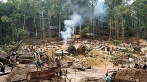 goldminenbedrohendenregenwald100~_v-gseapremiumxl